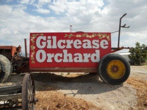 Gilcrease Orchard sign