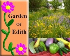 Garden of Edith, Fallon