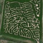 corn-maze-andelin