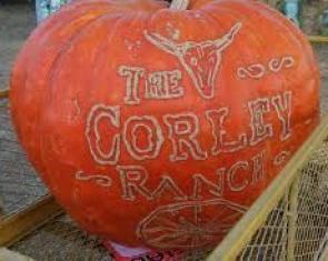 Corley Ranch, Gardnerville
