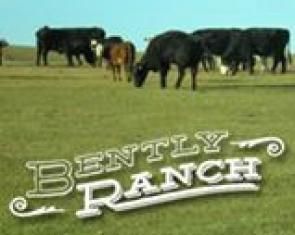 Bently Ranch, Minden