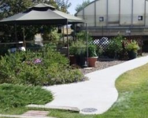 Colorscapes Greenhouse and Nursery,